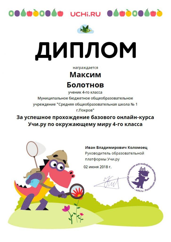 diplom_maksim_bolotnov_521098